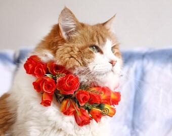 Lena | Puppy Flower Crown | Floral Orange Dog Collar | Red Flower Crown | Cat Flower Collar | Dog Boho Wedding | Dog Flower Wreath