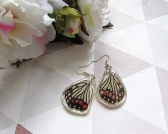 White and black stripes,Butterfly earrings, Resin butterfly, Resin Earrings, , butterfly wings, Taxidermy, Taxidermy jewellry ,Black and red