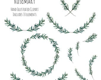 Clipart - Illustration - Rosemary herb - wreath, frame, decoration, botanical, watercolor, ink