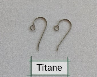 titanium, titanium hook, I DO NOT SELL hooks I adapt them simply, allergy, hypo-allergenic