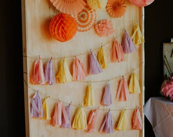 Photo Booth Backdrop | Hire