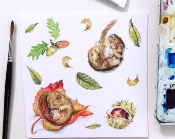 Dormouse Mouse Blank Greeting Card - 'Autumn Babies'