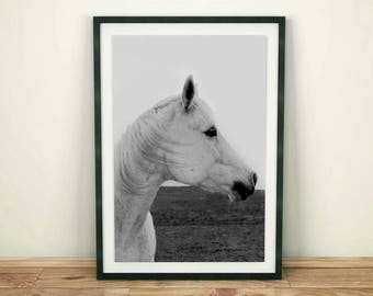 Horse Print,  Horse Art, Horse Photo, Black and White, Horse Photography Print, Modern Minimal Horse, Printable Horse Art, Instant Download