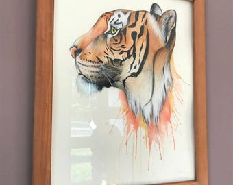 Custom Artwork - Watercolour and Pencil Drawings and Painting