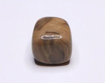 Petrified Wood PW21