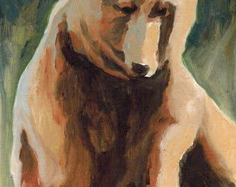 Brown Bear 8x10 Original Oil Painting