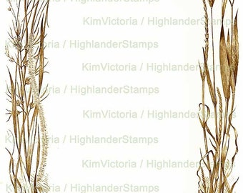 Digital Download Wild Grasses Frame, Illustration, Border, Vintage Victorian Clipart, Digital Collage