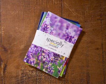 Specially Sussex Three Notebook Set - Flowers Special