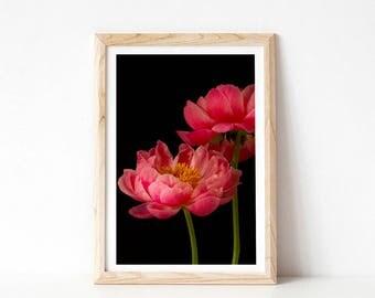 Dark Floral Wall Art, Pink Peonies Print, Moody Floral Print, Wall Art, Peony Print, Black and Pink Flower Print, Dutch Still Life