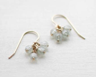 "14k goldfill earrings - ""lucky"" faceted earrings in frost - handmade by elephantine"