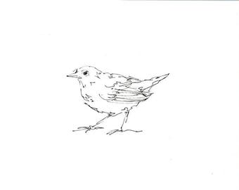 Sketchbook Sale - Bird #14 Original Ink Line Drawing - 8x10 Songbird Original Art