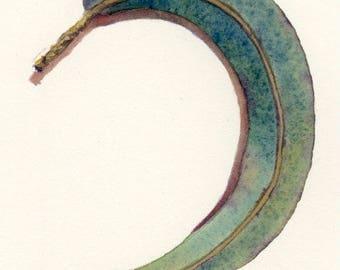 Blue/green gum leaf painting ~ original watercolour art