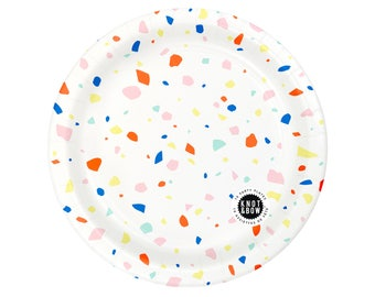 Party Plates | Rainbow Chip | 10 large plates per pack