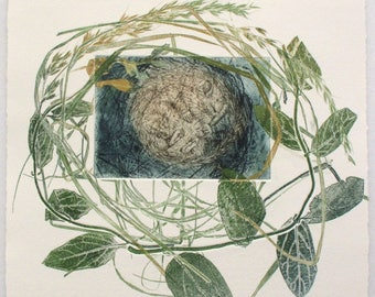 Dormouse Etching. Limited edition with monoprint plants.