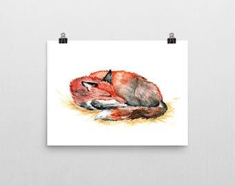 Sleeping Red Fox - Fine Art Print of original watercolor painting wildlife nature nap nursery art baby shower whimsical winter