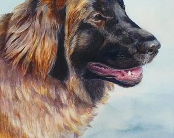 8x10 Custom watercolor dog portrait pet painting from photos, Memorial art gift, Original artwork by Janet Zeh