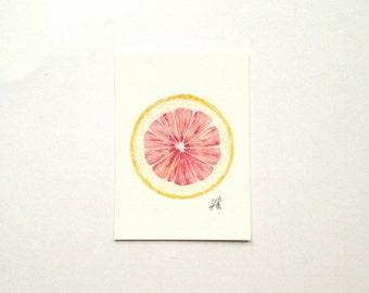 Grapefruit / Watercolor Illustration / Food Illustration / Art Print / Giclée Print / Wall Art / Home Decor