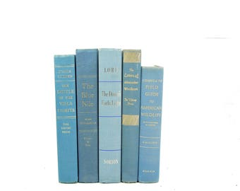 Baby Blue Decorative Books, sky Blue Book Set, Wedding Decor Centerpiece, Book Decor, Book Collection, Instant Library, Home Design