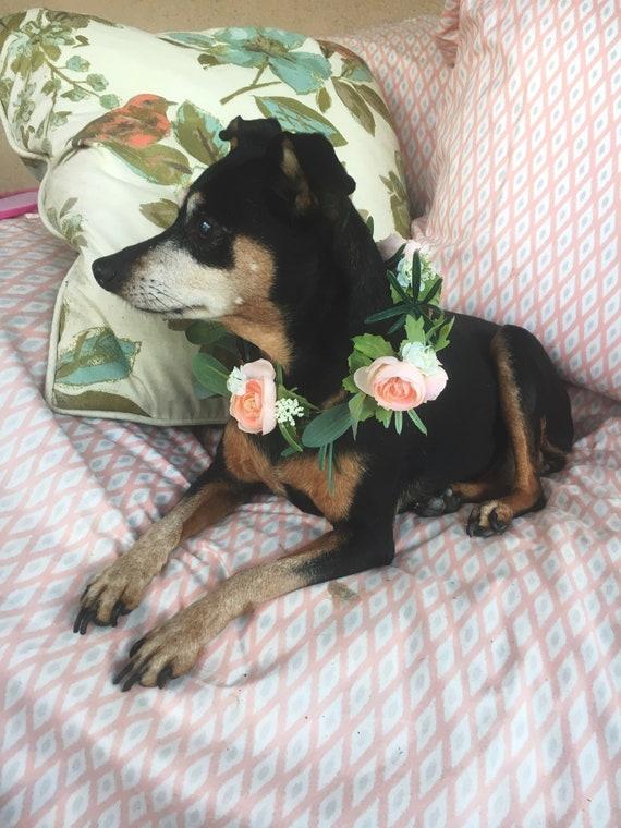 Small Dog Flower Collar. Small dog Dog Flower crown. Dog flower wreath. Dog wedding collar. Dog Collar. Dog costume.
