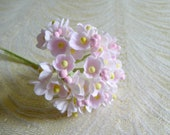 Forget Me Not Flowers Pale Pink for Vintage Style Crafts Dolls Cottage Chic Millinery Tiny Blossoms