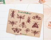 Bugs and beetles - decorative vintage look kraft doodle planner stickers suitable for any planner -454-