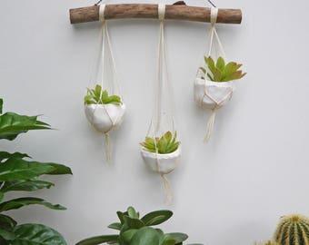 mobile décoratif macramé et ses trois petits pots à boutures de succulentes