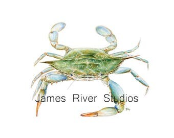 Crab Painting Crab Watercolor Painting Blue Crab Art Print Crab Print. Sea Green Beach Art Ocean Art Sea Art Beach Home Decor Coastal Art.