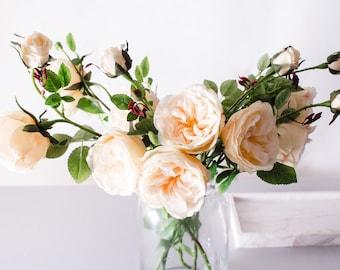 david austin roses | etsy