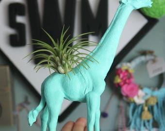 Custom Giraffe Planter with Air Plant Room Decor- Dorm Room Decor- Home Decor- Birthday Gift- Desk Decor- Zoo Animal