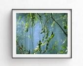 Green wall arts, Sea green wall decor, PRINTABLE picture, digital download arts, Sea green wall art, Teal home decor, forest photography art