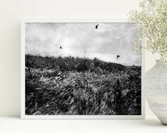 Digital download photography, Home inerior picture, Birds print Black and white photography Cottage wall decor For living room Printable art