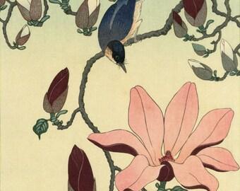 "Japanese Art Print ""Magnolia and Black-winged Magpie"" by Ohara Koson, woodblock print reproduction, fine art, asian art, cultural art"