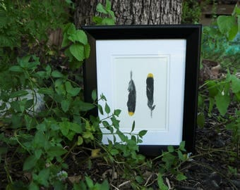 Cedar Waxwing feather in oil pastel (matted & framed)
