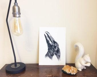 Crow Giclée A4 Art Print