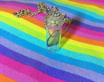 Glasswing Butterfly Wing In A Jar Necklace