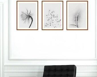 Botanical Print Set, Printable  Wall Art, Set of 3 Prints, Wild Flower Print, Botanical Print, Vintage Prints, Black and White Print