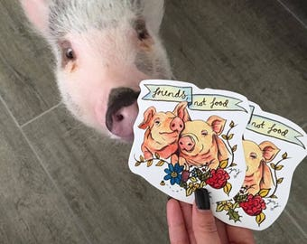 "Pigs are ""Friends, not food"" veggie/vegan sticker"