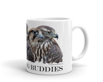 Falconry - My Hunting Buddies