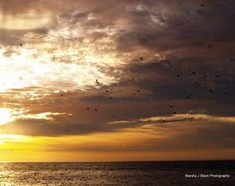"Sea Decor, ""Sea of Cortez Sunrise"" Print, Sea of Cortez Prints, Sea  Wall Art, Ocean Decor, Sea Lovers Gift, Ocean Lovers Gift"