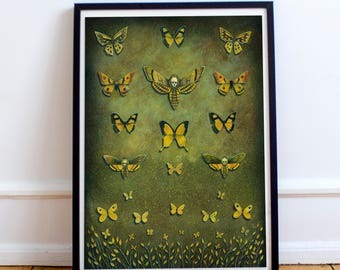 Butterfly Fine Art Print - Moth Painting - Home Decor - Gift Idea - Wall Art