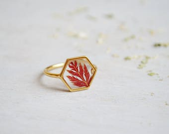 Maple leaf ring Hexagonal ring Veritable pressed leaf ring Resin ring Pressed maple leaf Red maple leaf ring Gold 16K plated Geometrical