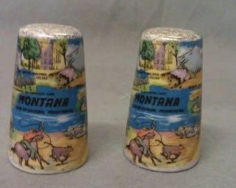 Montana State Souvenir Salt and Pepper Shaker Set