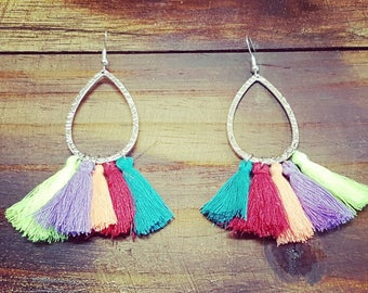 Rainbow Tassle Earrings