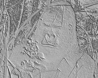 "Photo digital effect Gorilla ""imprint in the sand"""