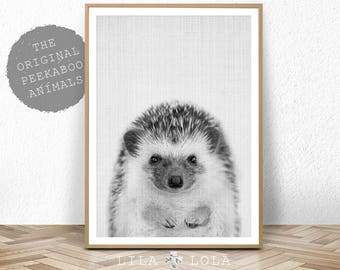 Hedgehog Print, Woodland Forest Decor, Nursery Printable Wall Art, Black and White, Large Baby Room Poster Digital Download, Peekaboo Animal