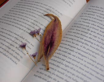 Real Pressed Flowers Laminated Page Keeper Bookmark with Single Lily Petal and Light Purple Violets