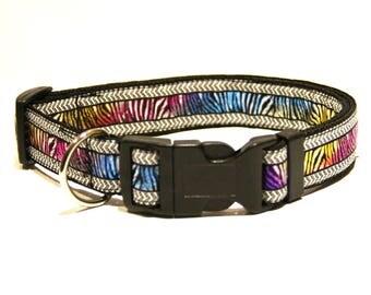 "Funky Dog Collar ""Disco Zebra"""
