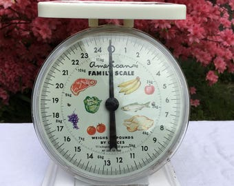Vintage American Family Scale, Food Scale, Kitchen Scale