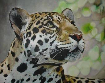 Leopard. Acrylic paint on canvas. Framed work. Realistic and animal-themed style. Original, with Certificate of Authenticity.