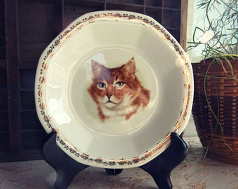 Soup plate decorated cat - cat vintage plate - gift
